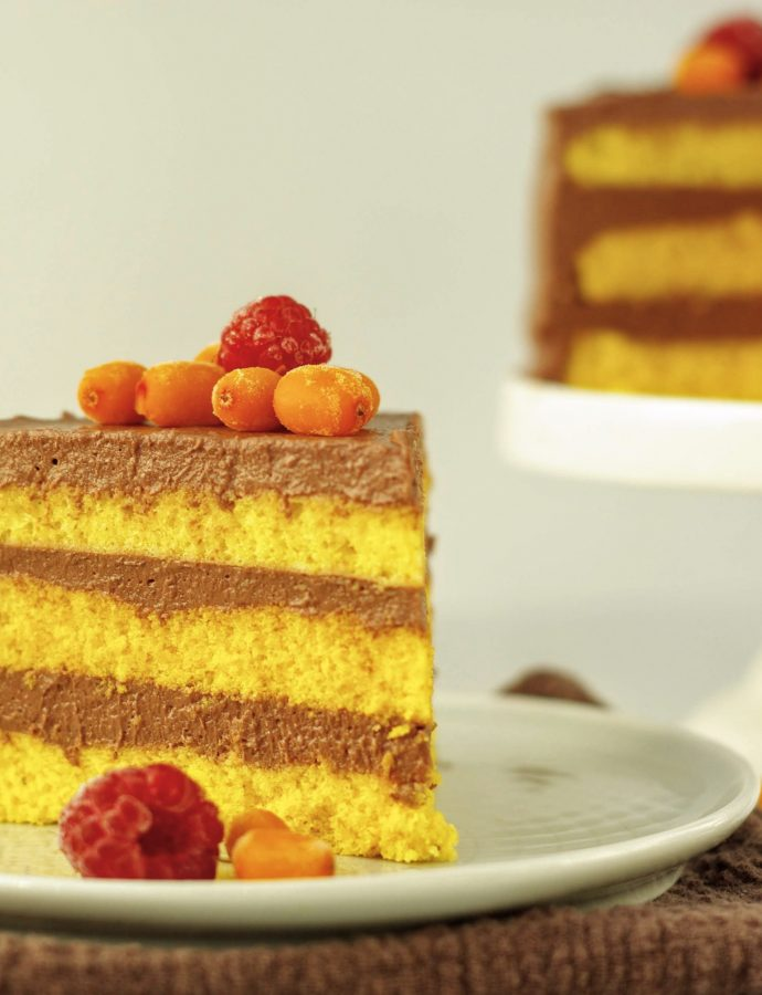 Торт Облепиха-малина-шоколад